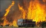 Victorian bushfires